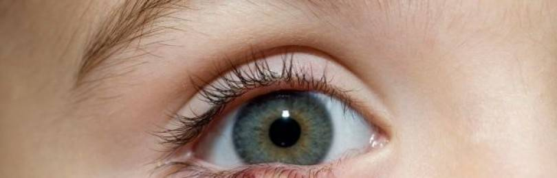 Быстрое лечение ячменя на глазу в домашних условиях: эффективные медикаменты и народные средства