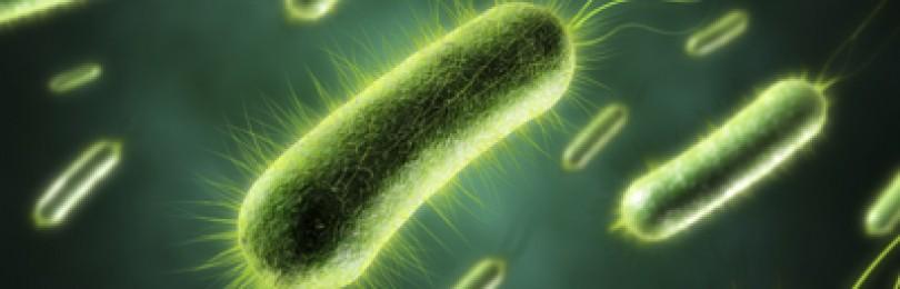 Лечебное питание при острых кишечных инфекциях у детей