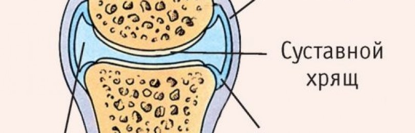Хондроитин с глюкозамином. инструкция по применению для суставов таблетки, уколы, мазь, гель. цена, отзывы, аналоги