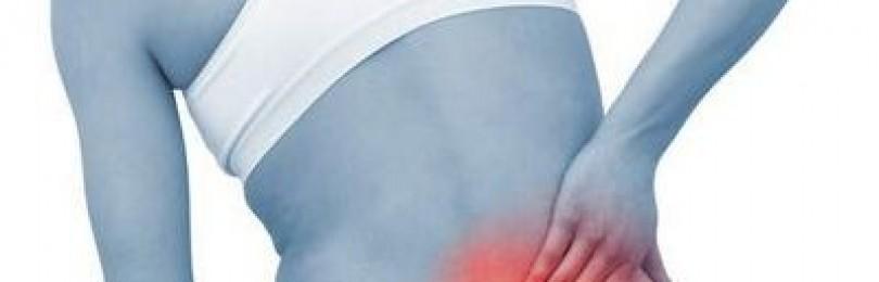 Травяные сборы при болях в спине