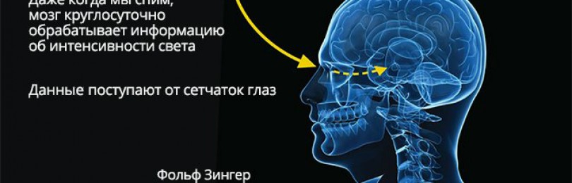 Мелатонин и неврология