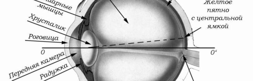 Кератотопография роговицы глаза: показания и результаты