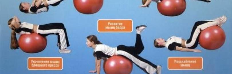 Комплекс упражнений на гимнастическом мяче для спины и позвоночника