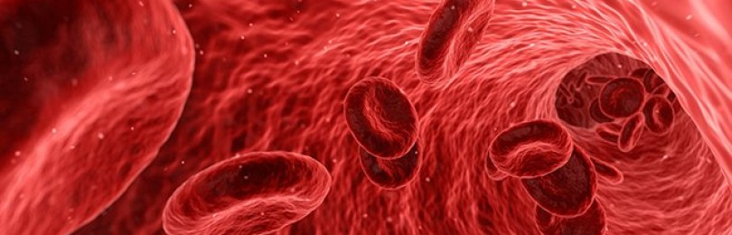 Антидиуретический гормон (вазопрессин)