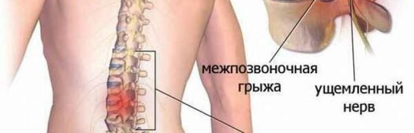 Инструкция по применению мази випратокс