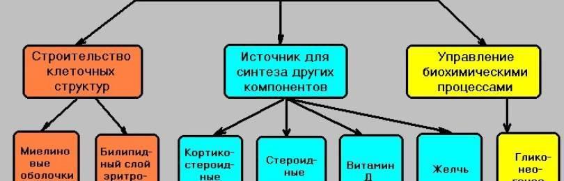 Крестор инструкция по применению