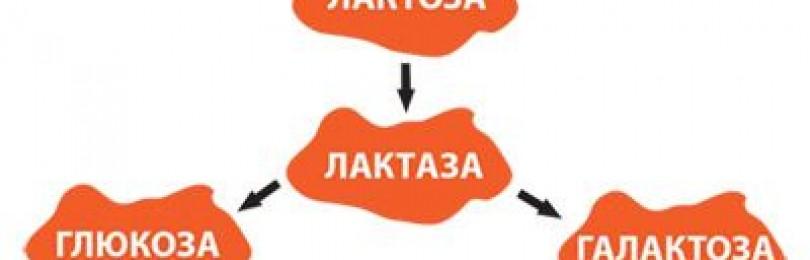 Лактулоза — инструкция по применению, аналоги, отзывы, цена