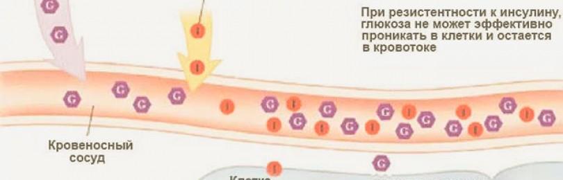Важно! как уровень инсулина влияет на продолжительность и качество жизни