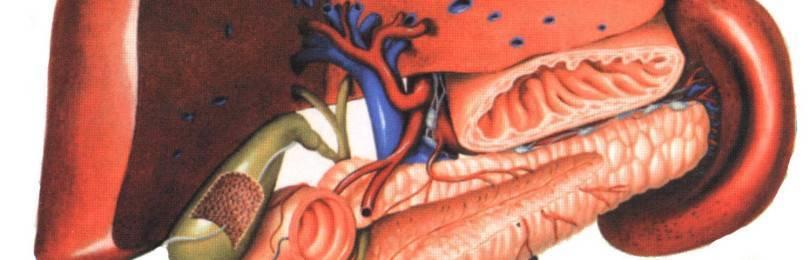 Хронический холецистит: что такое и как его лечить?