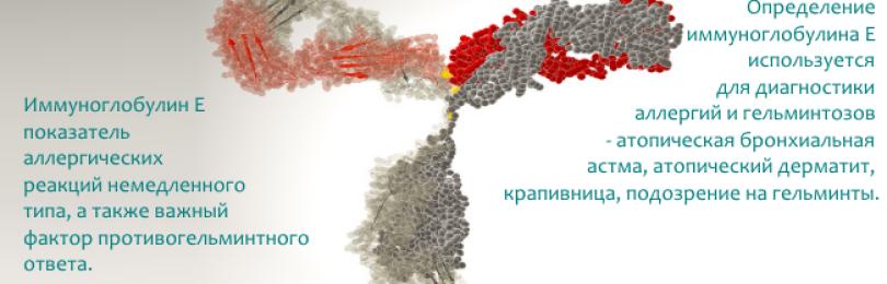 Расшифровка анализа на иммуноглобулин е