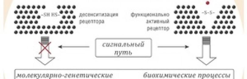 Глутоксим — инструкция по применению, аналоги, отзывы, цена
