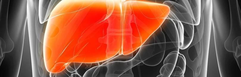 Можно ли вылечить активный хронический гепатит?
