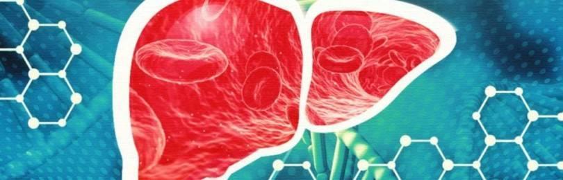 Криптогенный гепатит: причины, диагностика, лечение
