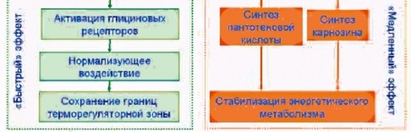Инструкция по применению препарата циклим аланин и отзывы