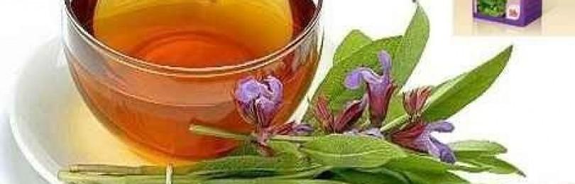Настойка ландыша на водке (спирте): рецепт и применение
