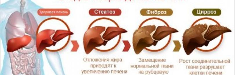 Диета при гепатозе печени примерное меню на неделю