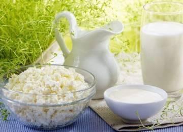 Полезены ли творог и молочная сыворотка для печени?