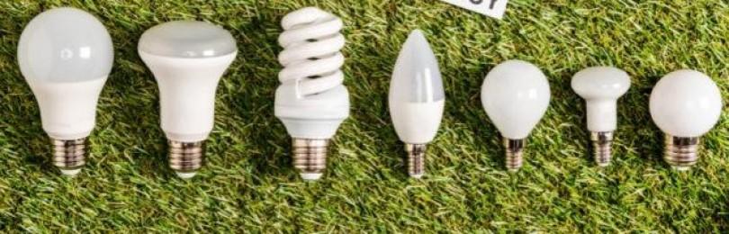 Куда выбросить энергосберегающую лампочку?