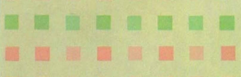 Тест на дальтонизм по полихроматическим таблицам рабкина