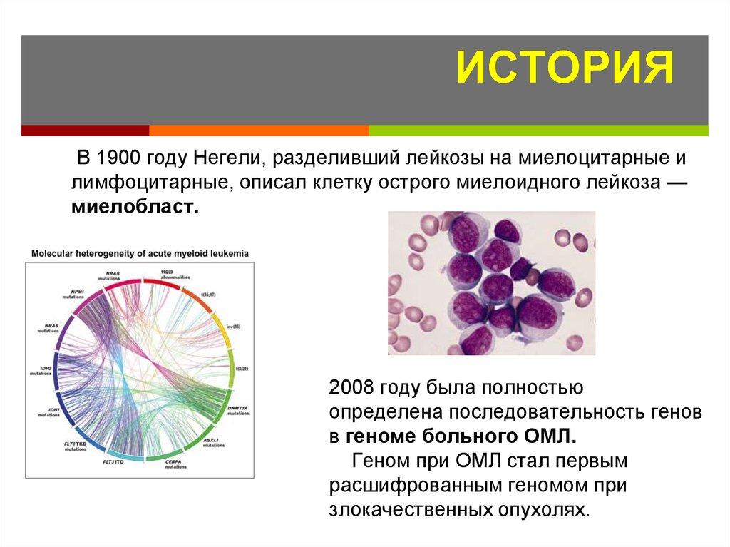 Ещё один медицинский обман 3 – лейкоз, лейкемия, рак крови