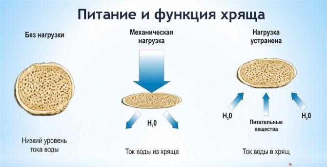 Артелар таблетки для суставов отзывы