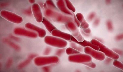 Клебсиелла пневмония у грудничка — симптомы и лечение