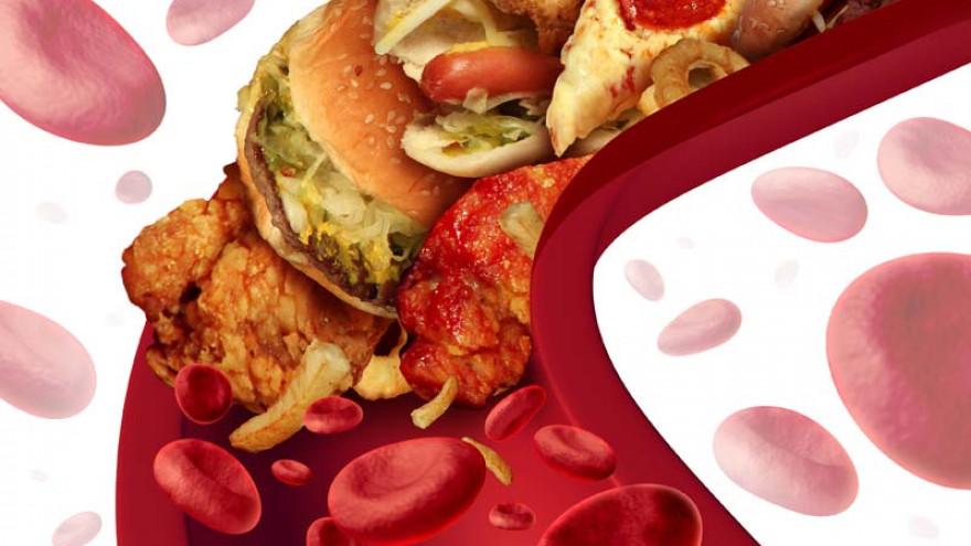 Холестерин - .. стероиды ..