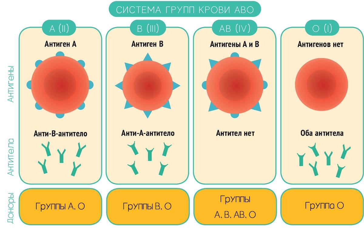 Болезни по группе крови