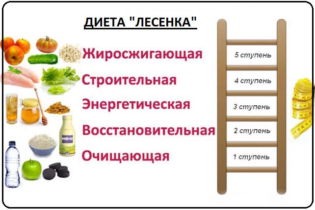 Пятидневную Диету Лесенка.
