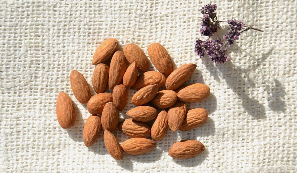 Состав, польза и вред грецкого ореха. как правильно употреблять продукт?