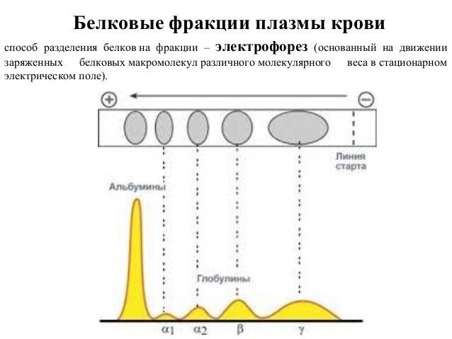 Азотемия - azotemia - qwe.wiki