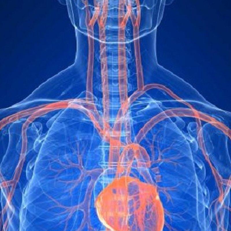 6 признаков высокого уровня кортизола в организме
