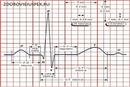 Гипертрофия правого желудочка: причины, диагностика и лечение