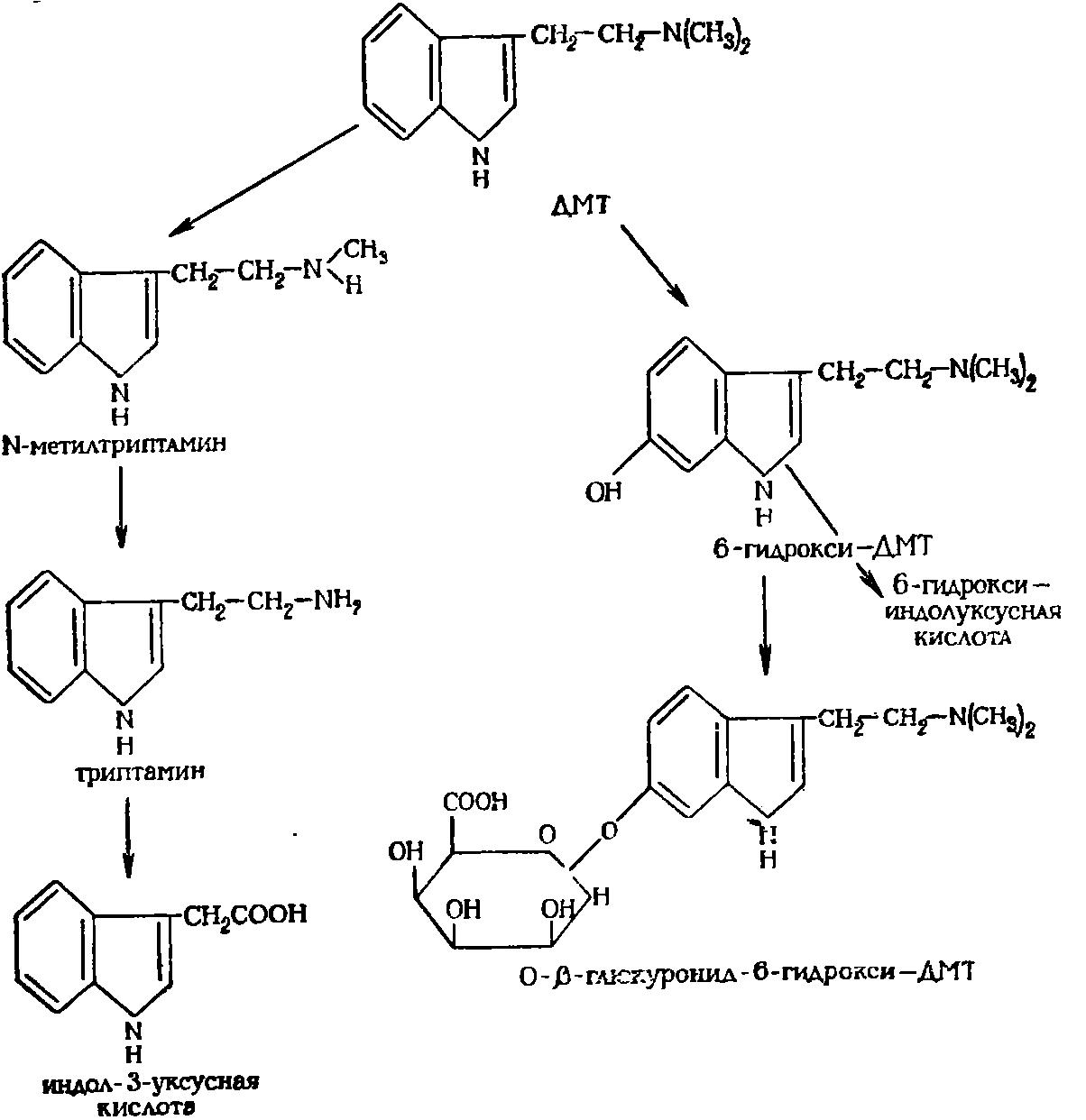 Инструкция по применению препарата «пророксан»