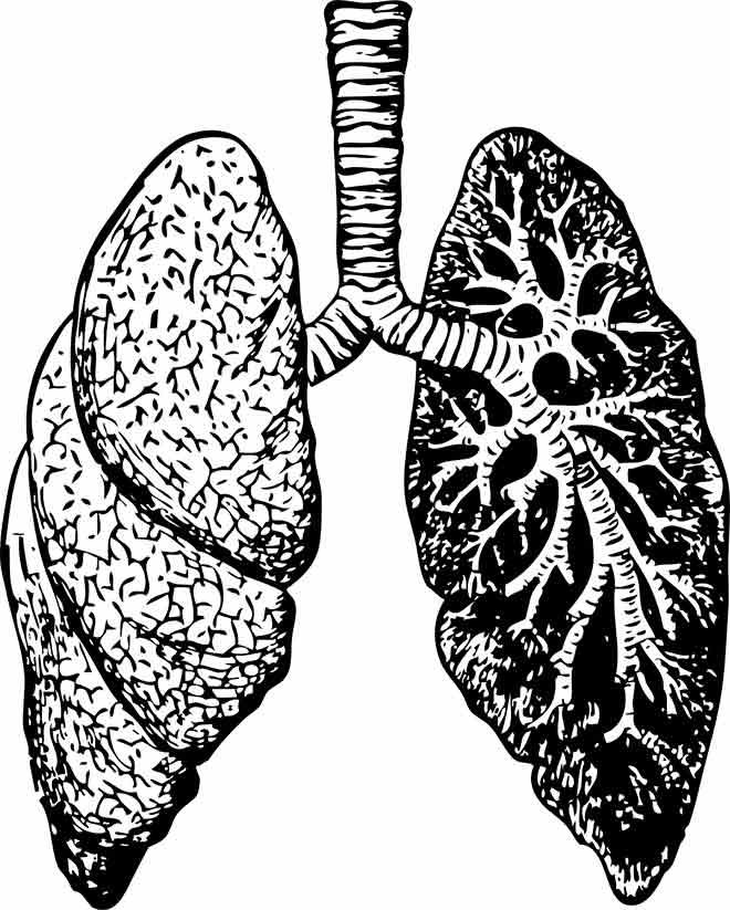 Можно ли в баню при пневмонии: правила посещения парной и рекомендации врачей