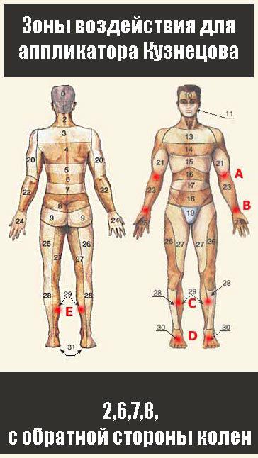 Аппликатор кузнецова — виды, терапевтический эффект, правила проведения процедур, отзывы