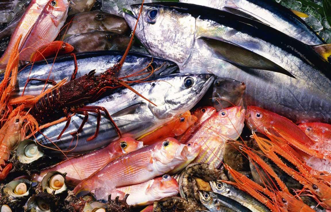 Морепродукты: состав, польза и свойства