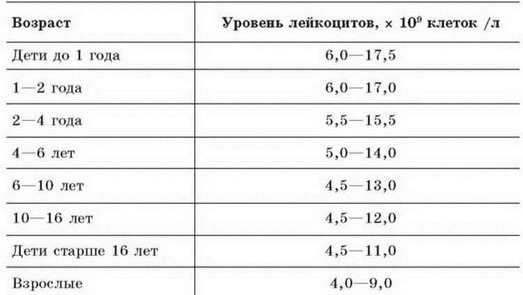 Лейкоцитоз — повышенное количество лейкоцитов в крови (wbc)