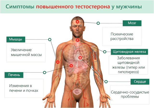 Низкий тестостерон у мужчин: симптомы, причины, методы лечение