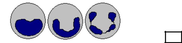 Базофилы — википедия переиздание // wiki 2