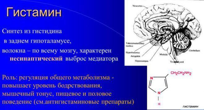 Цетиризин дигидрохлорид [lifebio.wiki]