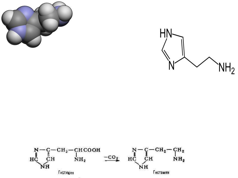 Гистамин (histamine) -  инструкция по применению, описание, фармакологическое действие, показания к применению, дозировка и способ применения, противопоказания, побочные действия.