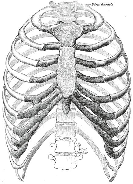 Деформация грудной клетки у ребенка