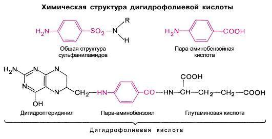 Показания и противопоказания к применению препарата уросульфан