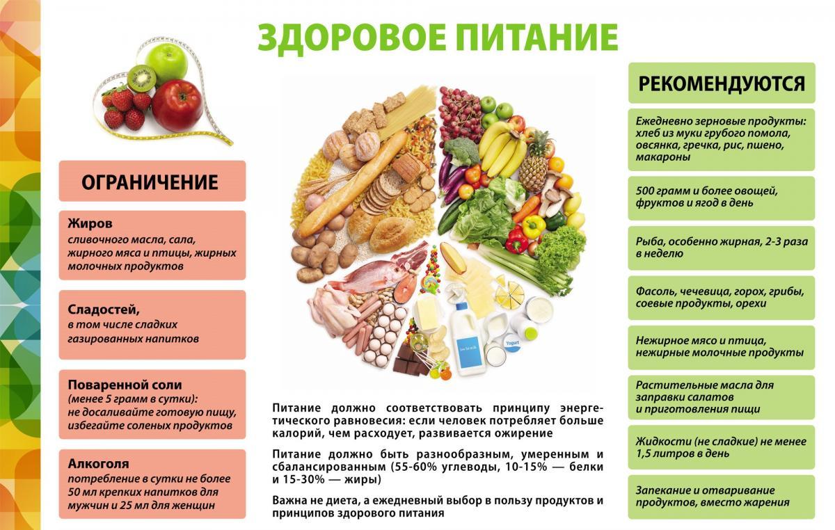 Питание и здоровье человека: какая связь?