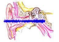 Факторы провоцирующие появления свиста в ушах и голове