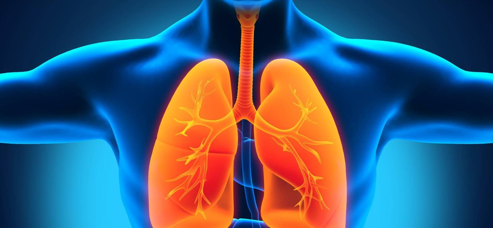 Туберкулез легких у взрослых: первые признаки, симптомы, лечение, причины появления. как лечить туберкулез