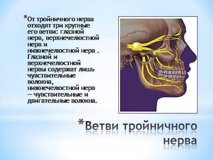 Болит горло отдает в ухо как лечить