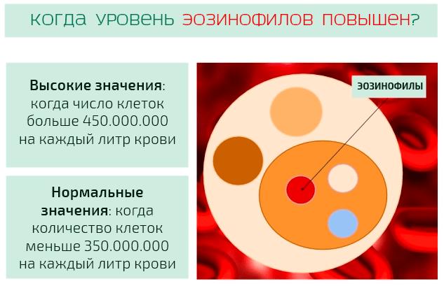Эозинофилы повышены у ребенка в крови. причины, что значит абсолютное значение в анализе. лечение народными средствами