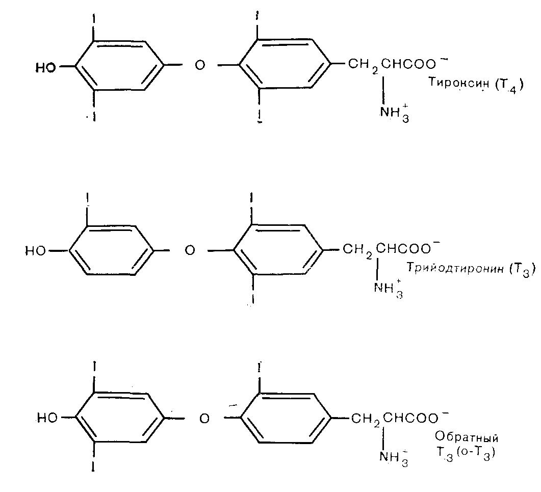 - тиреоидной функции - биохимия